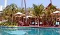 Rabbit Resort - Swimming Pool